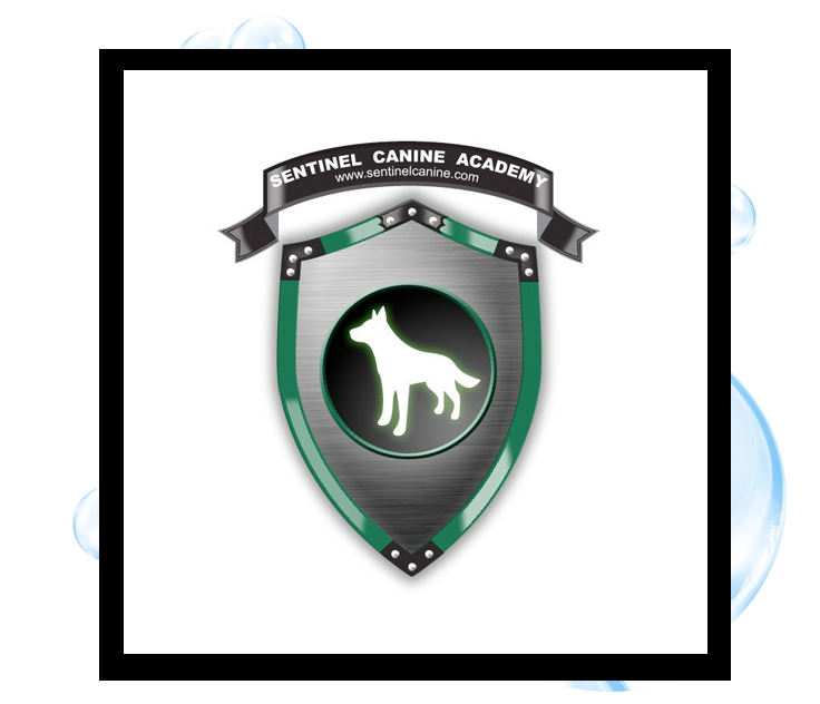 Sentinel Canine Academy Logo: Thirsty Fish Graphic Design
