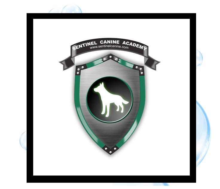 Sentinel Canine Academy Logo: Thirsty Fish Graphic Design